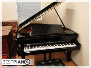 new piano Hoffman & Kuhne baby grand
