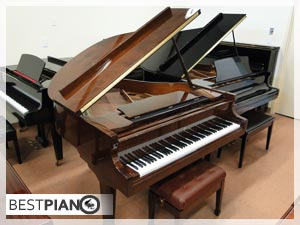 Hoffman & Kuhne New Piano